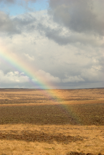 aa-rainbow
