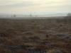 Ramsley marsh