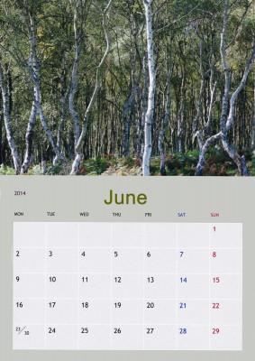 June_edited-1