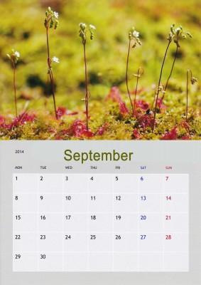 September_edited-1